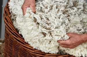 Virgin Wool in basket